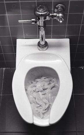 college toilet paper